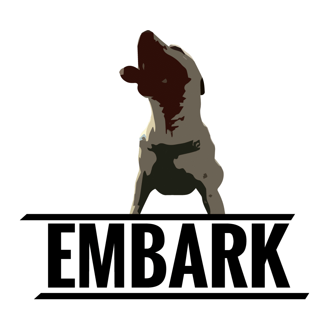EMBARK Web Design & Marketing Services for Business